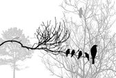 Birds silhouette on wood branch, vector illustration — Vecteur