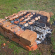 shashlik — Stock Photo #9834686