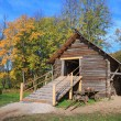 Rural stable in autumn grove - Stok fotoğraf