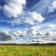 Green grass, blue sky and white clouds — Stock Photo