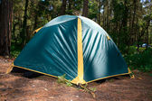 Green camping tent in the forest. — Stock Photo