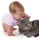 Vrolijke babe speelt met een kat. — Stockfoto