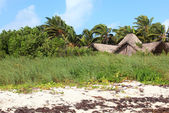 Hut on the island of Cayo Guillermo. Cuba. — Stock Photo