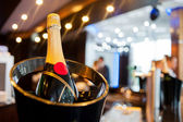 Champagne in a bucket — Stock Photo