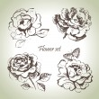 Royalty-Free Stock Vector Image: Floral set. Hand drawn illustrations of roses