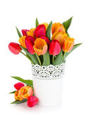 Red and orange tulips in flowerpot — Stock Photo