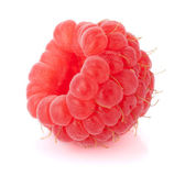 Fresh raspberry — Stock Photo