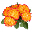 Orange rose bouquet — Stock Photo #9228915