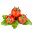Cherry tomatoes and basil leafs — Stock Photo