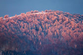 Sunrise in Carpathian Mountains, Ukraine — Stock Photo