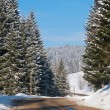 Snowy winter road in the mountains — Stock Photo #9013757