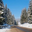 Heavy snow on the road — Stock Photo