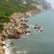 "Coastline with pine trees (""Inzhir"" reserve, Crimea, Ukraine) — Stock Photo"