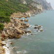 Coastline with pine trees (&quot;Inzhir&quot; reserve, Crimea, Ukraine) - Stock Photo