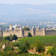 Castle of Carcassonne in Languedoc-Roussillon, France — Stock Photo