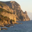 "Stockfoto: Coastline with pine trees (""Inzhir"" reserve, Crimea, Ukraine)"