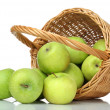 Basket of green apples on white background — Stock Photo