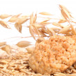 Oats and oatmeal cookies — Stock Photo