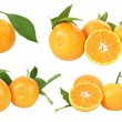 Fresh tangerines on white background — Stock Photo