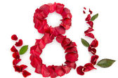 Rose petals in a shape of a eight — Stock Photo