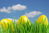 Yellow easter eggs in green grass under blue sky — Stock Photo