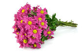 Pink flowers bouquet — Stock Photo