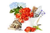 Jarní květiny a zahradní nářadí — Stock fotografie
