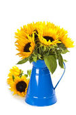 Sunflowers in a blue vase — Stock Photo