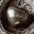 Heart in nest — Stock Photo