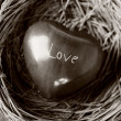 Stock Photo: Heart in nest