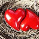 srdce — Stock fotografie #8636272