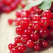 Ripe red currant berries — Stock Photo #8893379