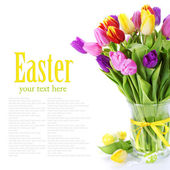 Spring tulipswith easter eggs isolated on white background — Stock Photo