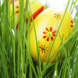 Easter eggs — Stock Photo #9331709