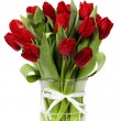 Red tulips — Stock Photo #9372683