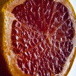 Red grapefruit slice. — Stock fotografie