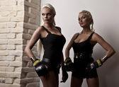 Two sexy female boxer — Stock Photo