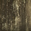 Abstract grunge background - Photo