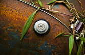 Close-up of an old grunge styled truck fuel cap — Stock Photo