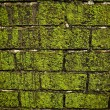 Grunge background of old stone wall texture. — Foto de Stock