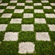 Green Zen garden. Chequered Grass. Background photo. — Stock Photo #8993830