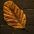 Autumn Leaf over wooden background. - Stock Photo