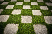 Green Zen garden. Chequered Grass. Background photo. — Stock Photo