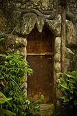 Old wooden door with ornaments — Stock Photo