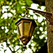 An old little street lamp in a garden — Stock Photo