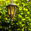 An old little street lamp in a garden — Stock Photo #9112468