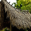 Old house whose roof was made from reed — Stock Photo
