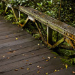 Wooden bridge — Stock Photo
