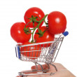 Stock Photo: Branch with tomatoes in shopping trolley on palm
