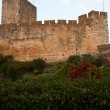Stock Photo: Templar Castle fortress